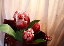 Tulpen en vrouwen` s zak Royalty-vrije Stock Foto