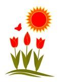 Tulpen en zon Royalty-vrije Stock Afbeeldingen