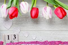 Tulpen für Mutter ` s Tag, 13 können Stockfoto