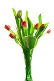Tulpen in geïsoleerdea vaas stock afbeeldingen