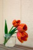 Tulpen in glas Royalty-vrije Stock Fotografie