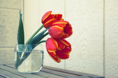 Tulpen im Glas Stockfotos