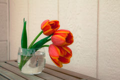 Tulpen im Glas Stockfoto