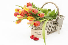 Tulpen im Korb Lizenzfreies Stockfoto