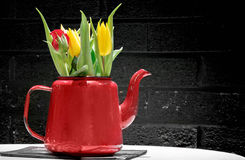 Tulpen im roten Potenziometer Lizenzfreies Stockfoto