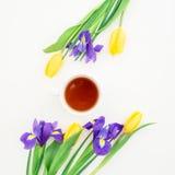 Tulpen, Irisblumen und Teebecher lokalisiert auf weißem Hintergrund Ausführliche vektorzeichnung Flache Lage Beschneidungspfad ei Stockfoto