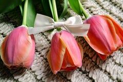 Tulpen met een boog Royalty-vrije Stock Foto