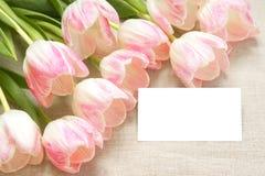 Tulpen met kaart Royalty-vrije Stock Foto's