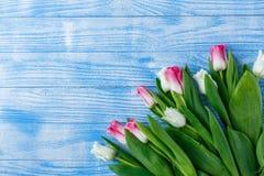 Tulpen met makarons op blauwe houten achtergrond Stock Foto's