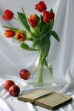 Tulpen mit Buch Stockbilder