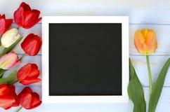 Tulpen mit leerem schwarzem TafelBilderrahmen auf weißem hölzernem Hintergrund Romantisches Bild Lizenzfreie Stockbilder