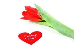 Tulpen mit Liebe Stockfotografie