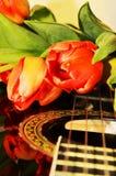 Tulpen op de koorden van een gitaar royalty-vrije stock foto's