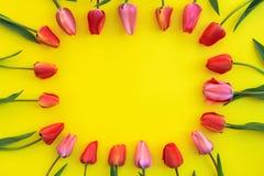 Tulpen op een gele achtergrond Royalty-vrije Stock Foto's