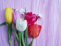 Tulpen op een roze houten rustieke wijnoogst als achtergrond Stock Afbeeldingen