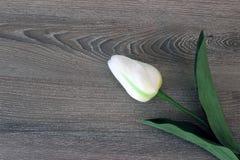 Tulpen op houten achtergrond met exemplaarruimte voor bericht De achtergrond van de moeder` s Dag Hoogste mening Stock Foto's