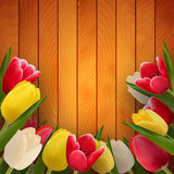 Tulpen op raad stock illustratie