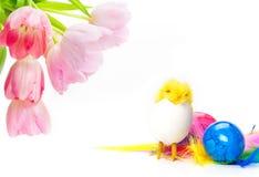 Tulpen, Ostereier, Ostern-Küken Lizenzfreies Stockbild