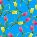 Tulpen simless pattern2-01 Stock Fotografie