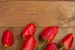 Tulpen sind auf leeren hölzernen Brettern - Liebes- und Feiertagskonzept Lizenzfreies Stockfoto