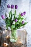Tulpen - ultraviolettes Stockfoto