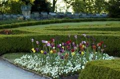 Tulpen und alter Schlosspark Stockfotos
