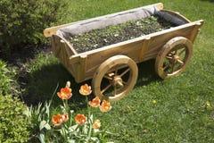 Tulpen und Blumenbeet auf dem Rasen Lizenzfreies Stockbild