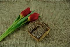 Tulpen und Herzen Stockfotos
