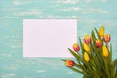Tulpen und Leerbeleg Lizenzfreie Stockfotografie