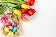 Tulpen- und Ostereier auf einem weißen Hintergrund Lizenzfreies Stockbild