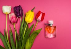 Tulpen und Parfüm auf rosa Hintergrund stockbild