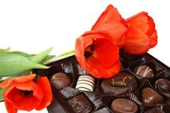 Tulpen und Schokolade Stockbilder