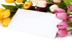 Tulpen und unbelegte Meldung lizenzfreies stockbild