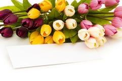 Tulpen und unbelegte Meldung lizenzfreie stockbilder