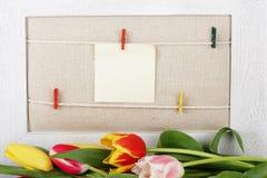Tulpen und unbelegte Meldung Stockfotos