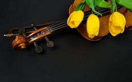 Tulpen und Violine Lizenzfreies Stockbild