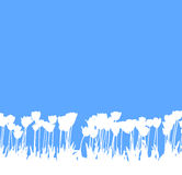 Tulpen in wit en blauw Stock Foto's