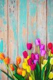 Tulpenblütenblumen auf der Weinlese hölzern stockfoto