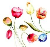 Tulpenbloemen Stock Afbeeldingen