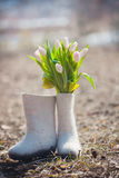 Tulpenbloemen in gevoelde laarzen stock afbeelding