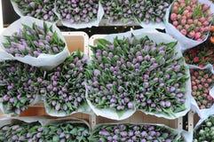 Tulpenbloemen het winkelen Stock Afbeeldingen