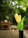 Tulpenblume auf dem Tisch mit einem bokeh Hintergrund Stockfoto