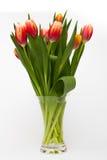 Tulpenblumen im Glasvase stockbild