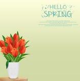 Tulpenblumen im Glasvase Stockfotografie