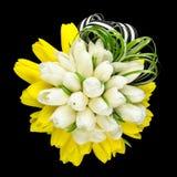 Tulpenblumenstrauß mit Grüns und Band Stockfotos