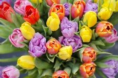 Tulpenblumenstrauß von der Spitze Lizenzfreie Stockfotos