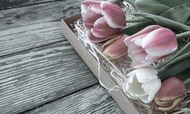 Tulpenbos op de donkere achtergrond van schuur houten planken Stock Afbeeldingen