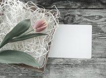 Tulpenbos op de donkere achtergrond van schuur houten planken Royalty-vrije Stock Foto
