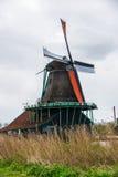 Tulpenfeld adnd alte Mühlen im netherland Stockbild