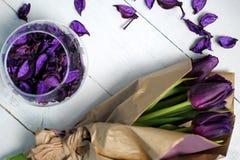 Tulpenpurple: gelukwensen, 8 Maart Internationale Vrouwen` s Dag, 14 de Dag van Februari Valentine ` s, vakantie Stock Foto